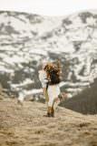 Colorado Adventure Elopements Destination Adventure Weddings Rocky Mountain National Park Elopement Photographer Colorado Elopement Photographer