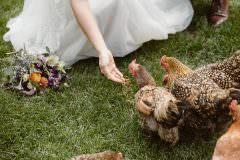ALPEN WAY CHALET MOUNTAIN LODGE WEDDING| EVERGREEN COLORADO DESTINATION WEDDING
