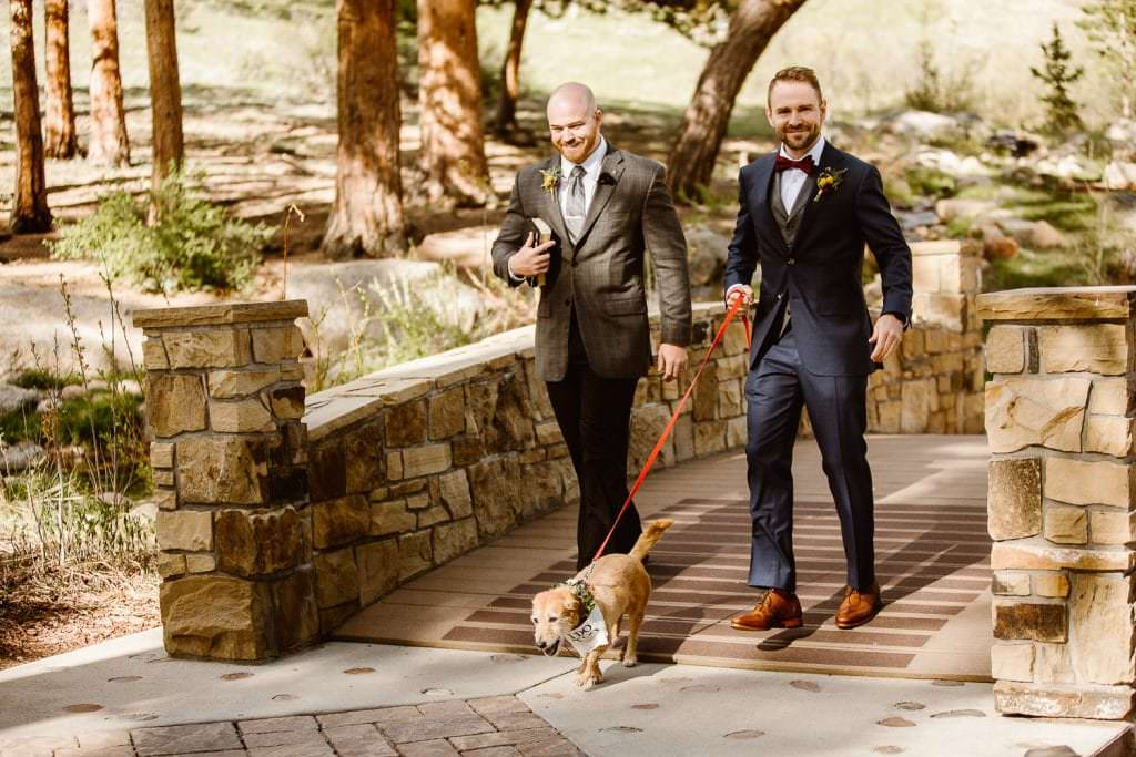 """""""At the end of the day it's all about who you wanna own a dog with.""""⠀Photo by Justyna E Butler Photography DELLA TERRA MOUNTAIN CHATEAU COLORADO WEDDING 