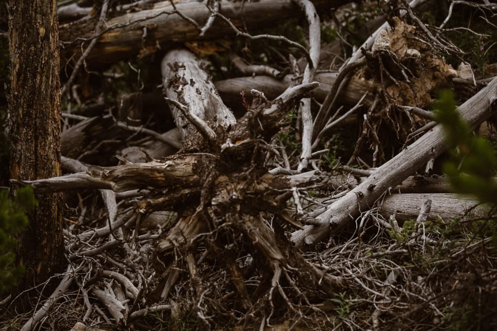 Bonfire snuggle of Jamie + Nick Highline Trail Adventure Elopement | CDT Hiking Elopement | Continental Divide Trail Adventure Elopement | Destination Adventure Wedding Photographer | Wyoming Wind River Range Adventure Elopement