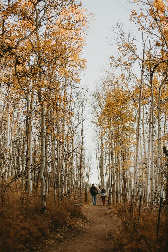 bailey Colorado, Colorado Wedding Photographer